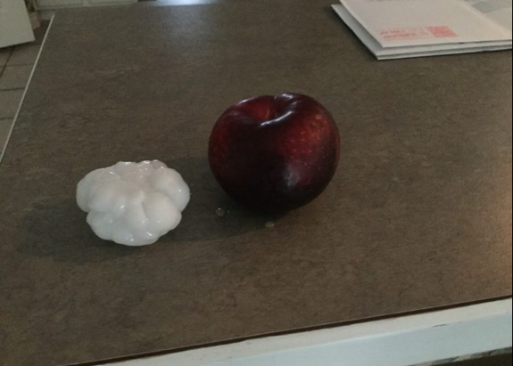Neighbor's Picture of some of the Hail